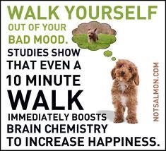 walking good for health